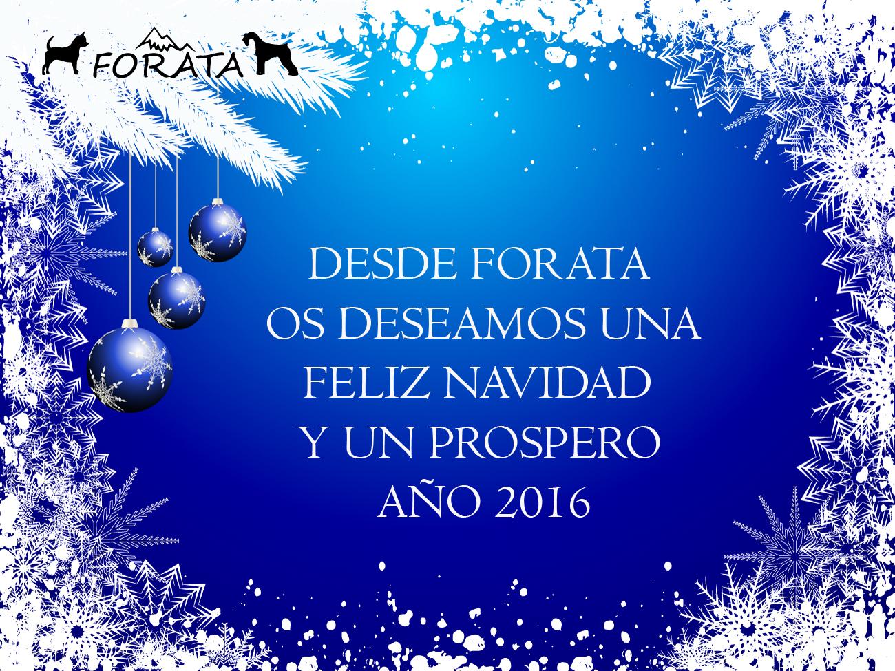 Felices Fiestas !!!!!