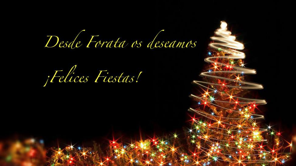 Os deseamos ¡Felices Fiestas!