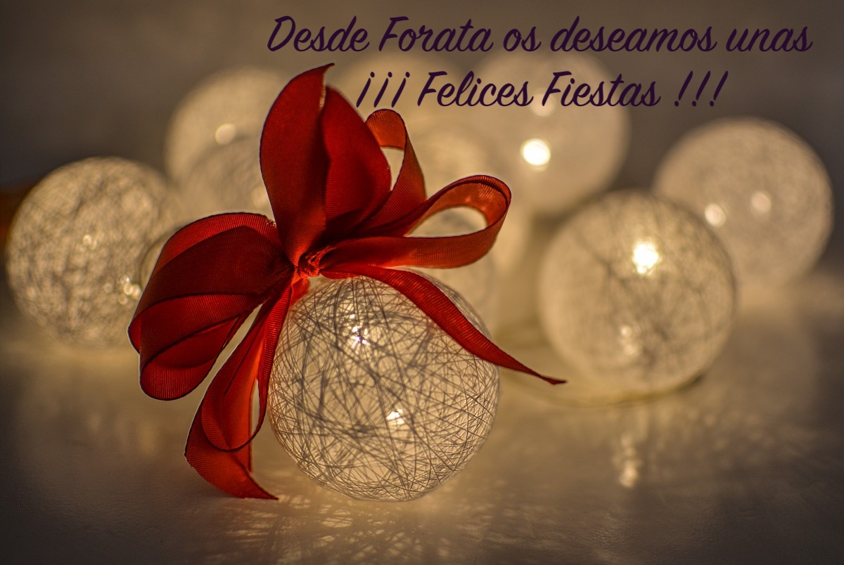 Felices Fiestas !!!!